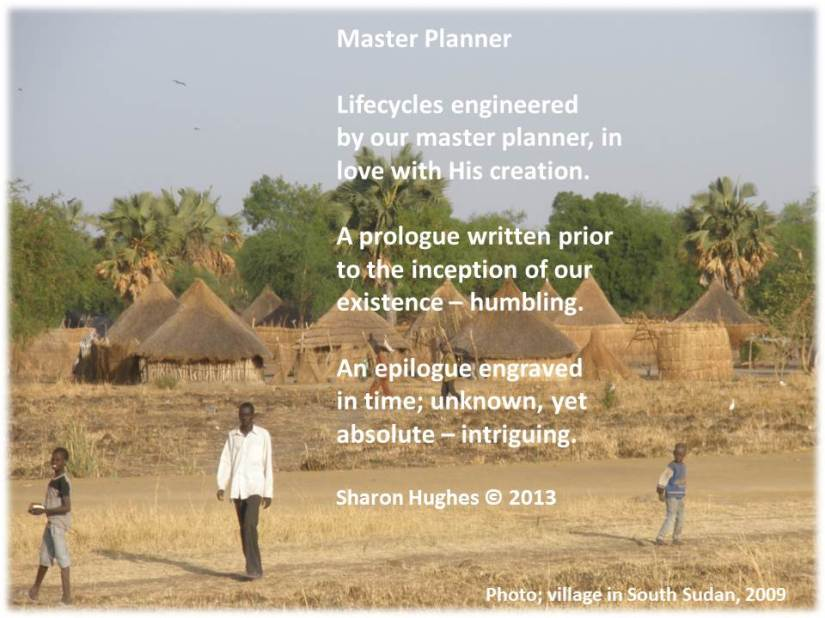 Master Planner